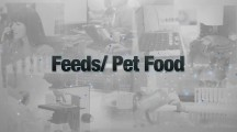 Midwest Laboratories – Feed & Pet Food
